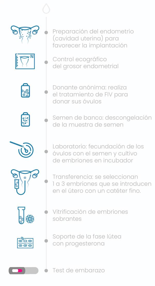 FIV - Fecundación In Vitro con semen y óvulos de donante